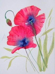 Poppies in Watercolour